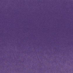 obraz (455)
