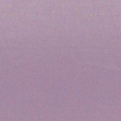 obraz (456)