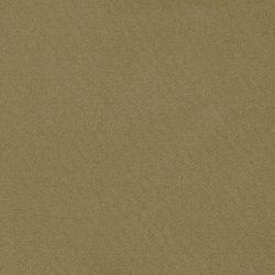 obraz (525)