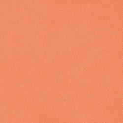 obraz (529)
