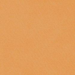 obraz (537)