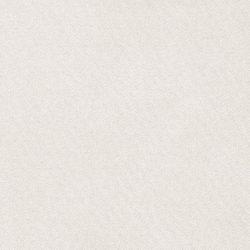 obraz (551)
