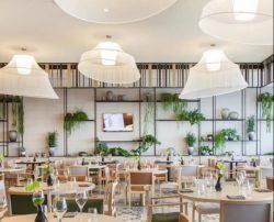 Для отелей и ресторанов (79)
